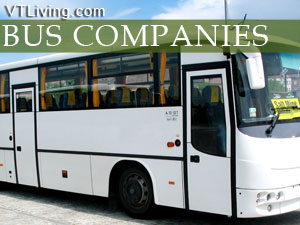 VTbus