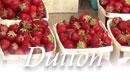 Duttons Berry Farm vermont farm stand