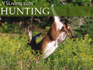 vermont game hunting deer moose bear grouse woodcock waterfowl wild turkey