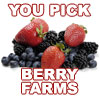 u pick Berry Farms in Vermont.