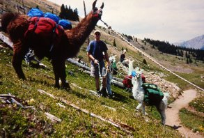 Vermont Llama Vacations