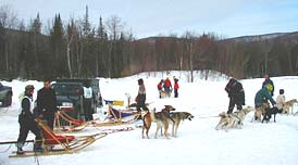 dog sled races vermont
