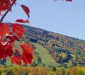 vt ski mountain foliage