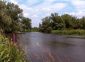 vt_coventry_river