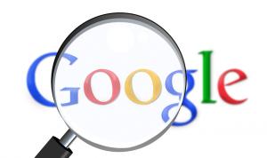 Google VT Living Site Search