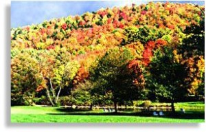 early fall foliage vacations in Vermont