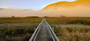 West Rutland Vermont Marsh
