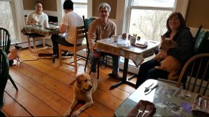 Dog friendly breakfast at Paw House Inn Vermont