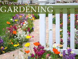 Vermont Gardening herb gardens indoor gardens vt gardening tricks