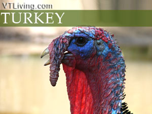 turkey roasting tips, thanksgiving preparations