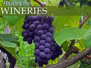 vermont wineries,vermont,wines,vt wines,vermont winemakers