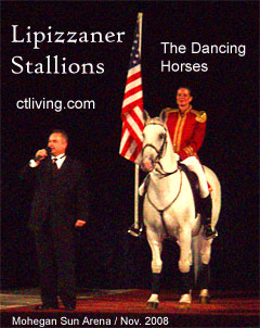 Lippizaner Stallions, Lipizzaner Stallions