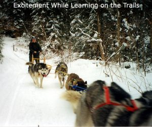 Vermont Dog Sled Tours