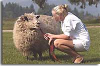 girl-with-sheep1