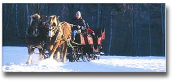 horse-drawn sleigh rides at The Mountain Top Inn & Resort - Chittenden, VT