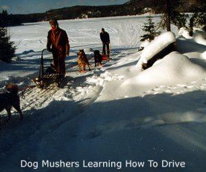 vermont mushers