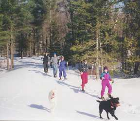 Vermont Snowshoeing Vacations, Vermont vacation ideas, Vermont vacation activities
