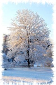 Vermont Winter Vacation